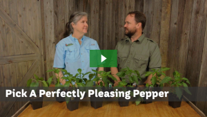 Pick a pleasing pepper