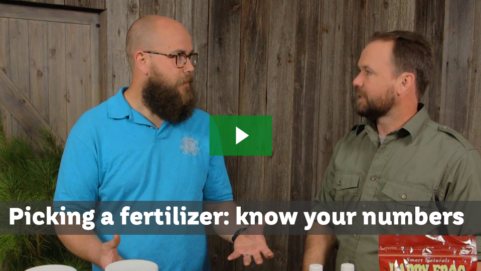 Understand Fertilizer Numbers