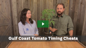 Gulf Coast Tomato Timing Cheats