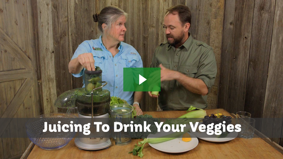 Juicing To Drink Your Veggies