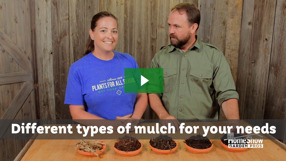 Different types of mulch for your needs
