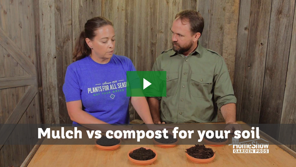 Mulch vs compost for your soil