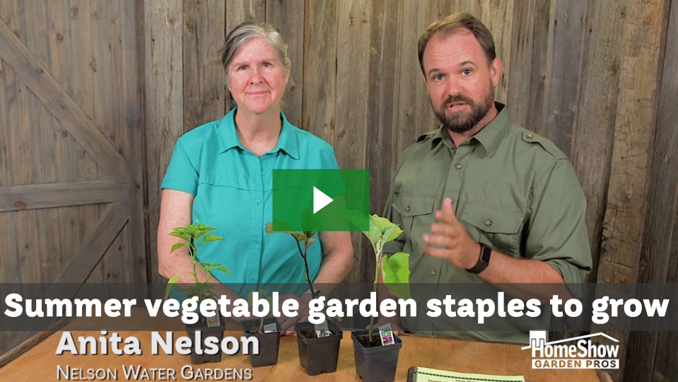 Summer vegetable garden staples to grow in your space