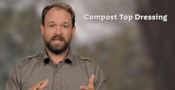 compost top dressing