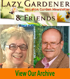 lazy gardener newsletter