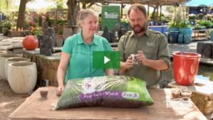 Soil Mulch and Compost