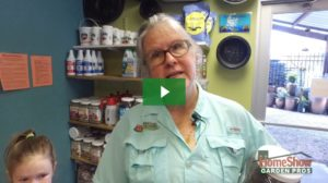 How to kill weeds and fertilize